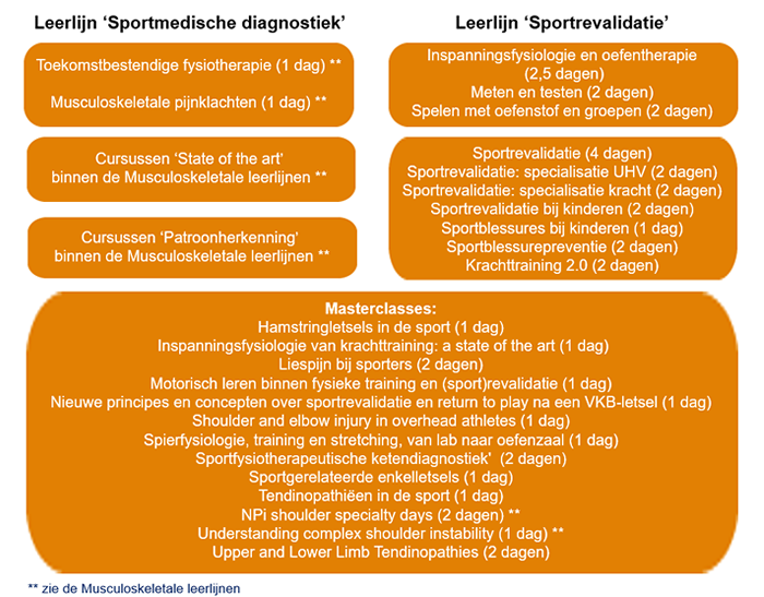 sportmedische diagnostiek en sportrevalidatie