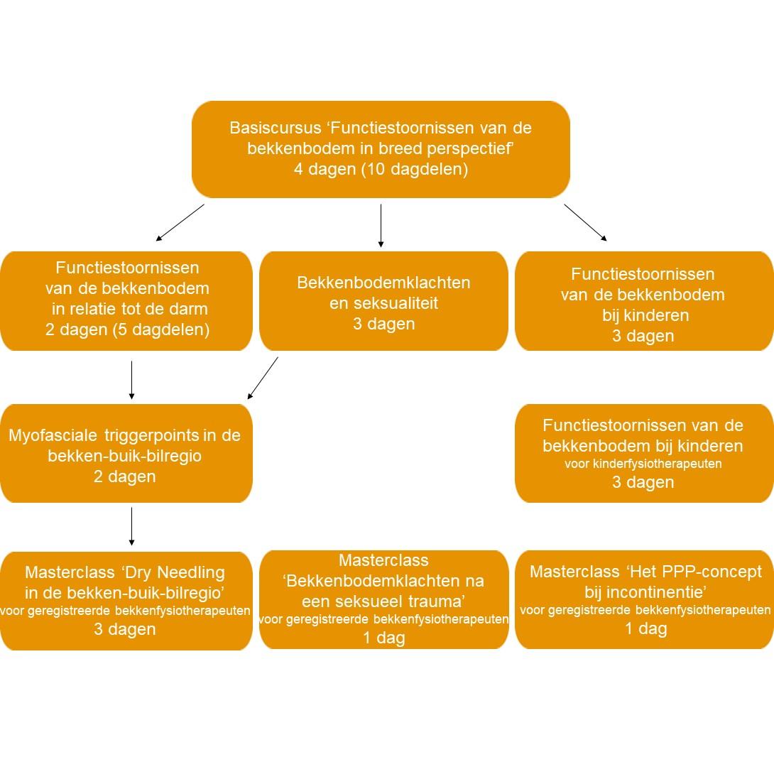 fysiotherapeutische-mogelijkheden-bij-mensen-met-darmklachten-die-in-relatie-staan-tot-functiestoornissen-van-de-bekkenbodem