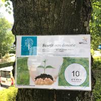 npi-laat-20-bomen-planten-als-compensatie-papiergebruik