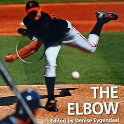 cursus-elleboogklachten-a-state-of-the-art-inclusief-boek-the-elbow
