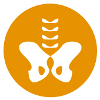 npi-service-bekkenproblematiek-jrg-3-2014-nr-6-21-augustus