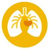 npi-service-hart-vaat-en-longen-2020-1
