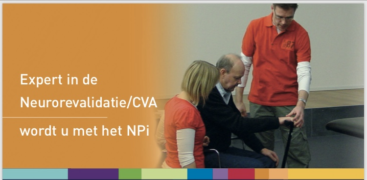expert in neurorevalidatie